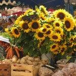 I mercati di Aix-en-Provence