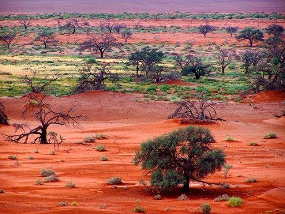 Deserto Nabibia