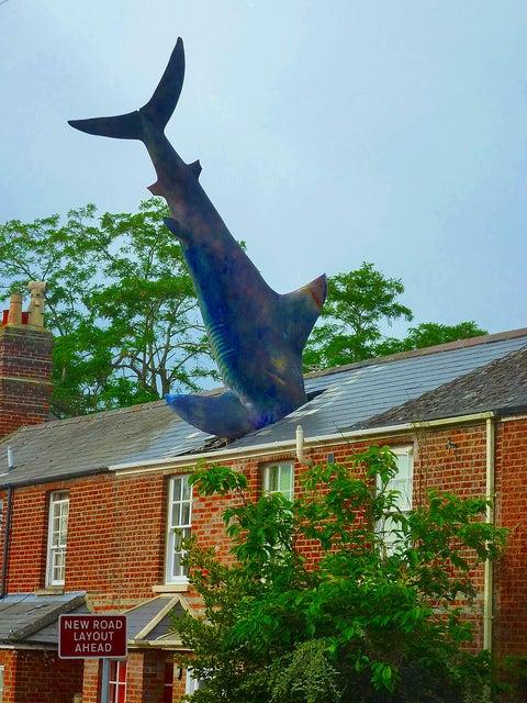 headington shark