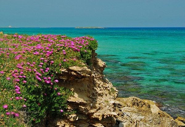 Riserve marine protette Puglia