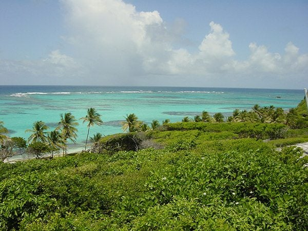 Grenadine Caraibi