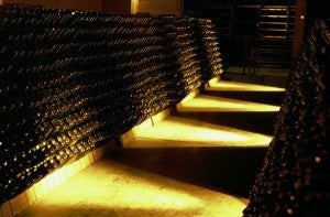 Cantina Trentino Strade Vino