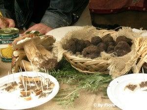 Sagra tartufo