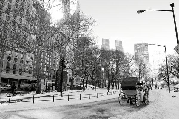 natale Capodanno 2012 new york
