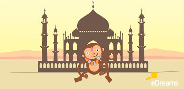 Consigli di viaggio India