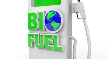Finnair: un'altra compagnia si consacra al biocarburante