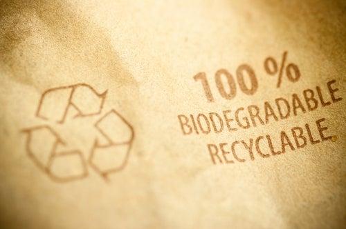 Contenitori Biodegradabili a Bordo