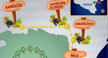 Le Strade del Vino: i vigneti dell'Etna