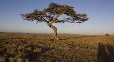Viaggio per l'Africa…attraverso le immagini