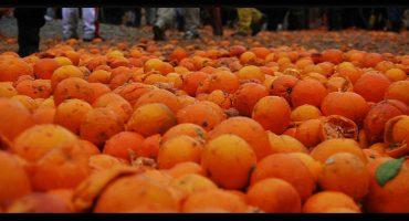 Arance: l'ingrediente essenziale del Carnevale di Ivrea