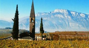 Il Trentino enogastronomico: un territorio ricco di storie da raccontare