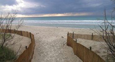 Le riserve naturali della Puglia, scrigno di biodiversità