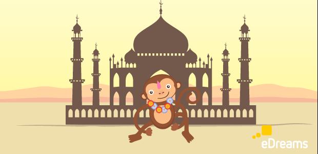 Guida viaggio India
