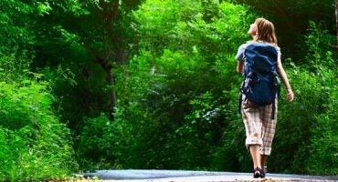 Camminare nel selvatico
