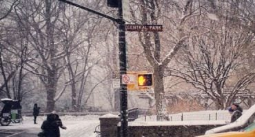 New York sotto la neve: le 20 foto più belle da Instagram