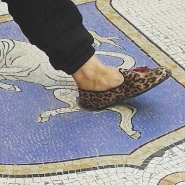 Mosaico del toro, Galleria Vittorio Emanuele