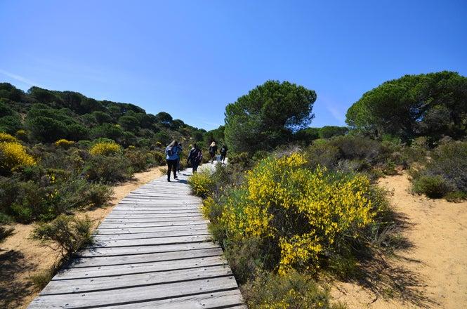 parco nazionale doñana andalusia