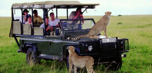 safari vacanza avventura