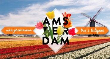 Questa primavera vola ad Amsterdam
