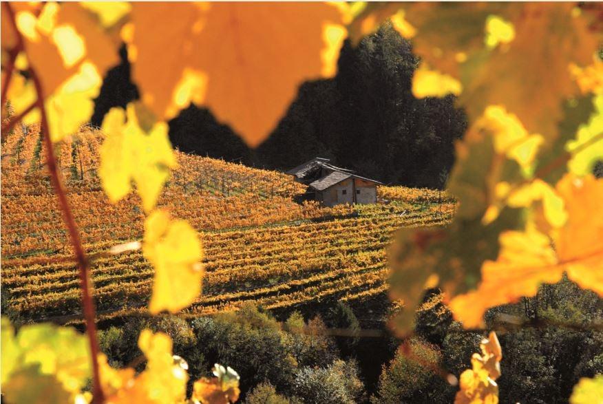 trentino autunno