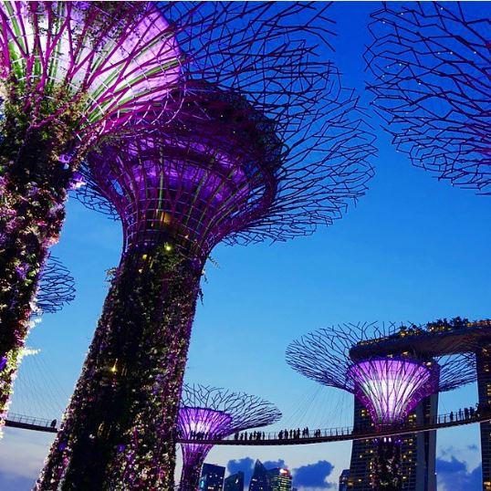 supertrees de singapur