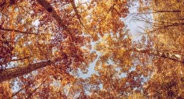Destinazioni da scoprire il prossimo autunno