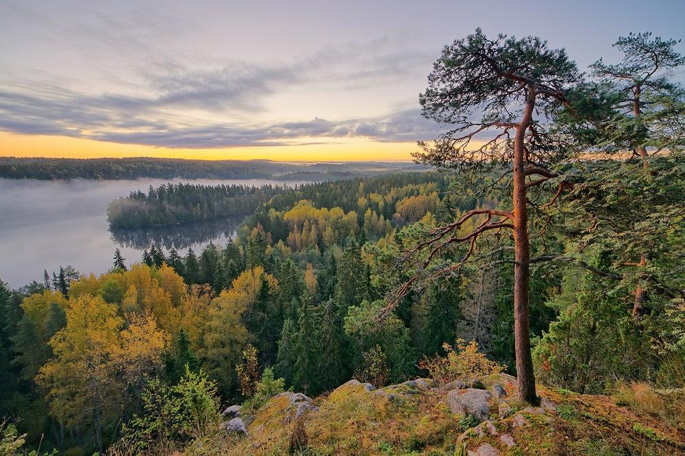 parco naturale finlandia