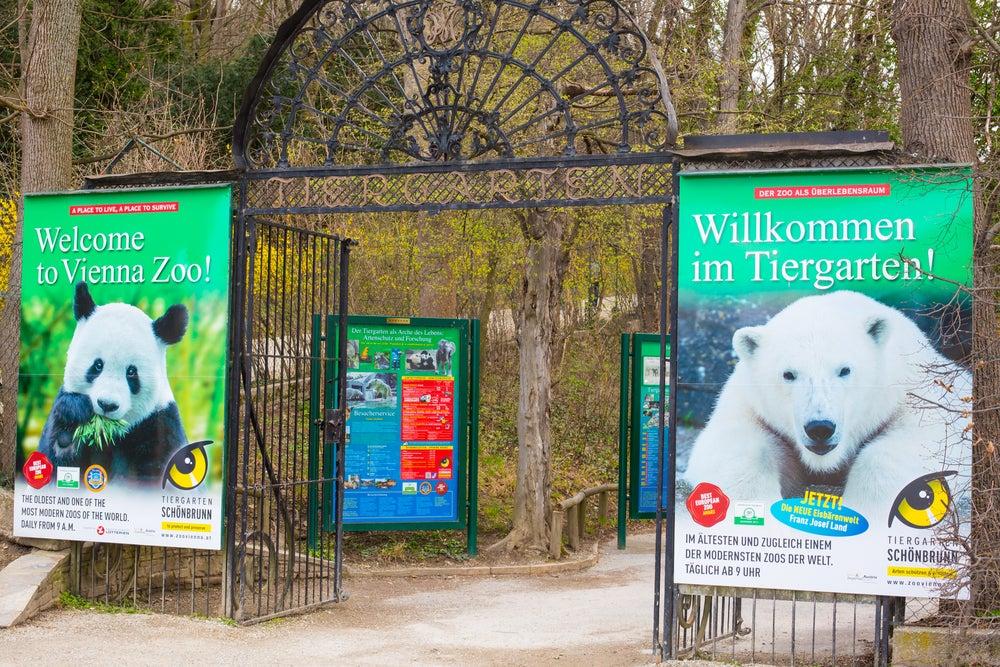 entrata Tiergarten Schönbrunn zoo Vienna