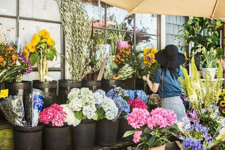 Mercato dei fiori di Parigi a Piazza Louis-Lépine