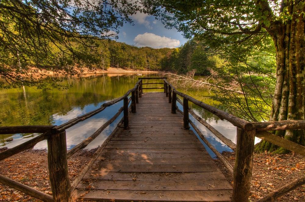 Foresta con lago nel Gargano Puglia