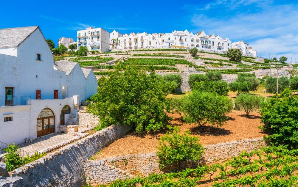 Valle d'Itria Locorotondo Puglia
